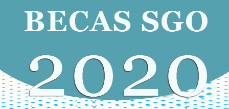 BECAS SGO 2020